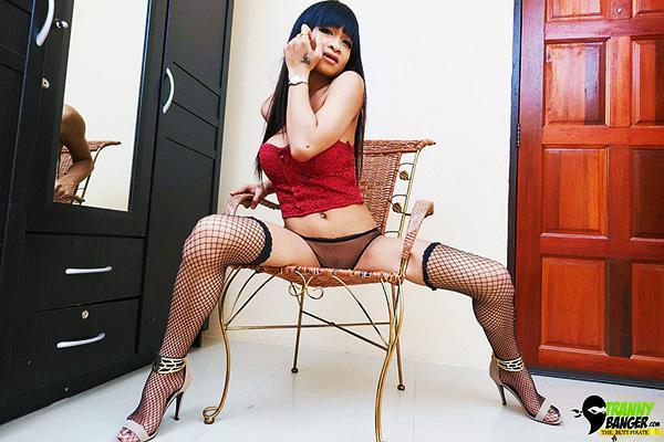 Ladyboy Panties