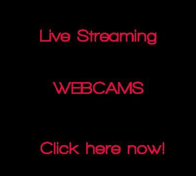 live cam feeds