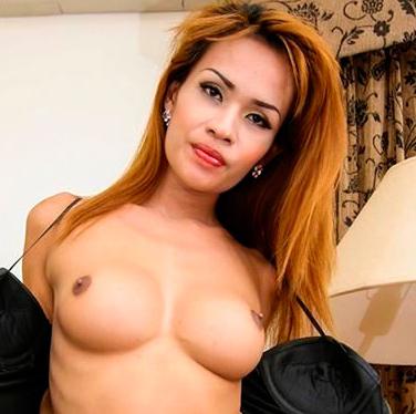 firm nipples